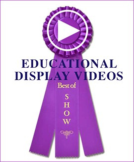 Education Display Videos: Best of Show